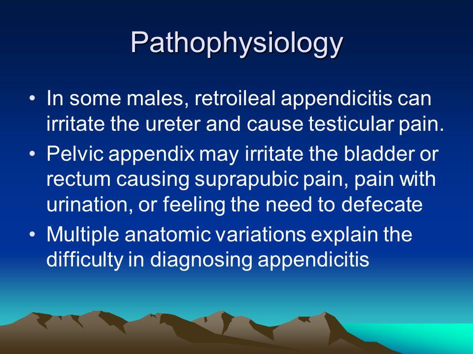 Acute Appendicitis. - ppt video online download