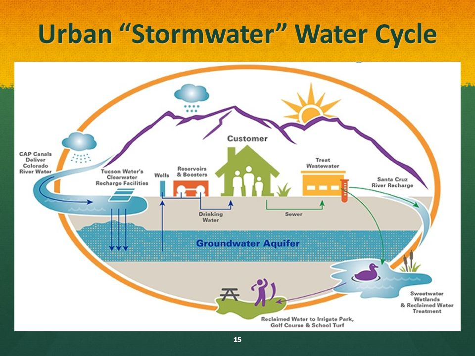 Natural And Urban Stormwater Water Cycles Ppt Download