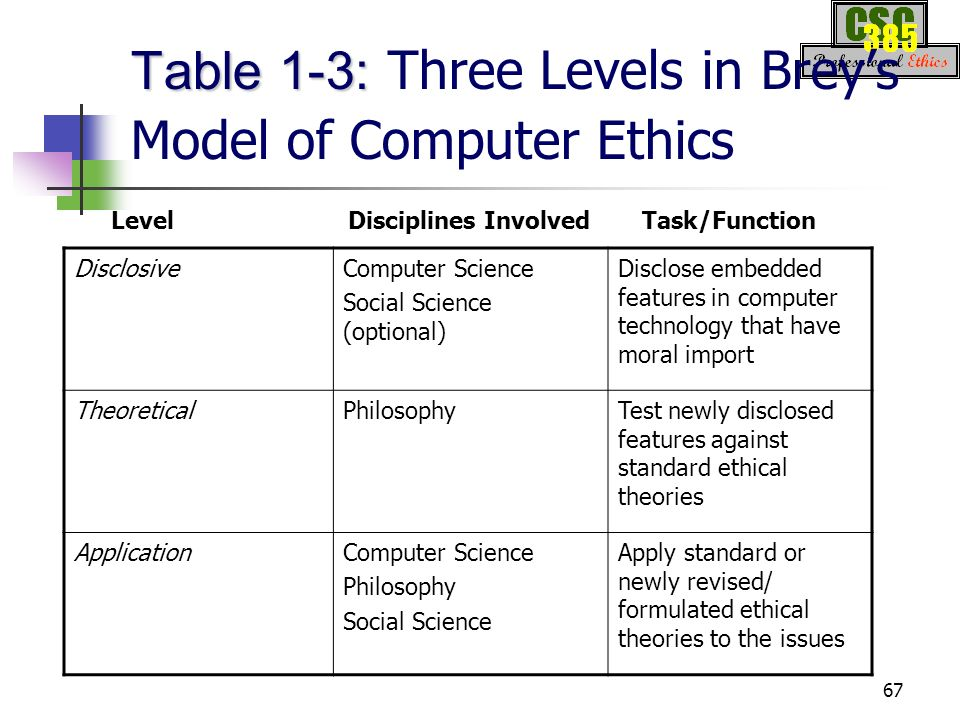 computer ethics issues pdf