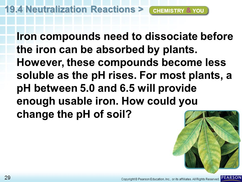 Chapter 19 Acids Bases And Salts 19 4 Neutralization Reactions