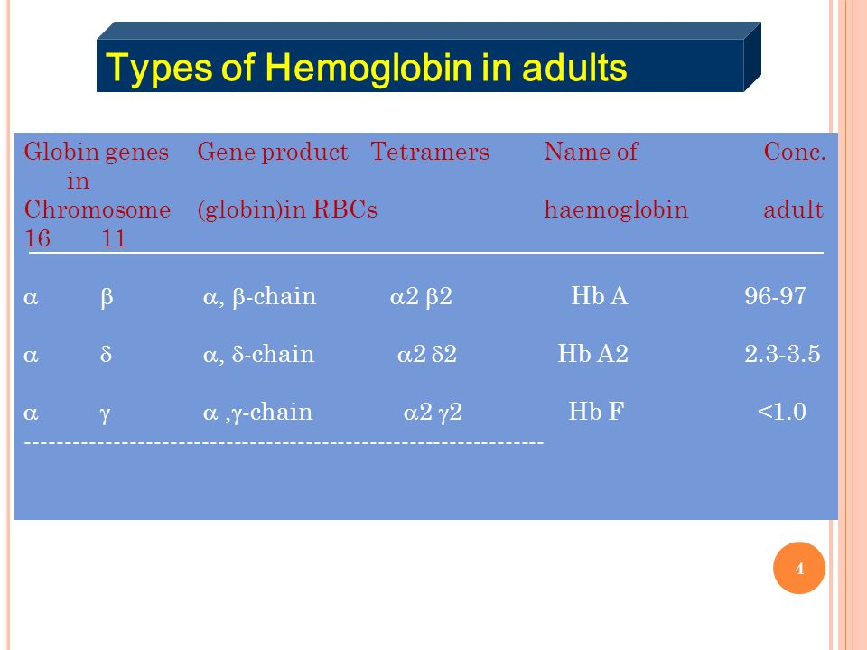Types of Hemoglobin in adults
