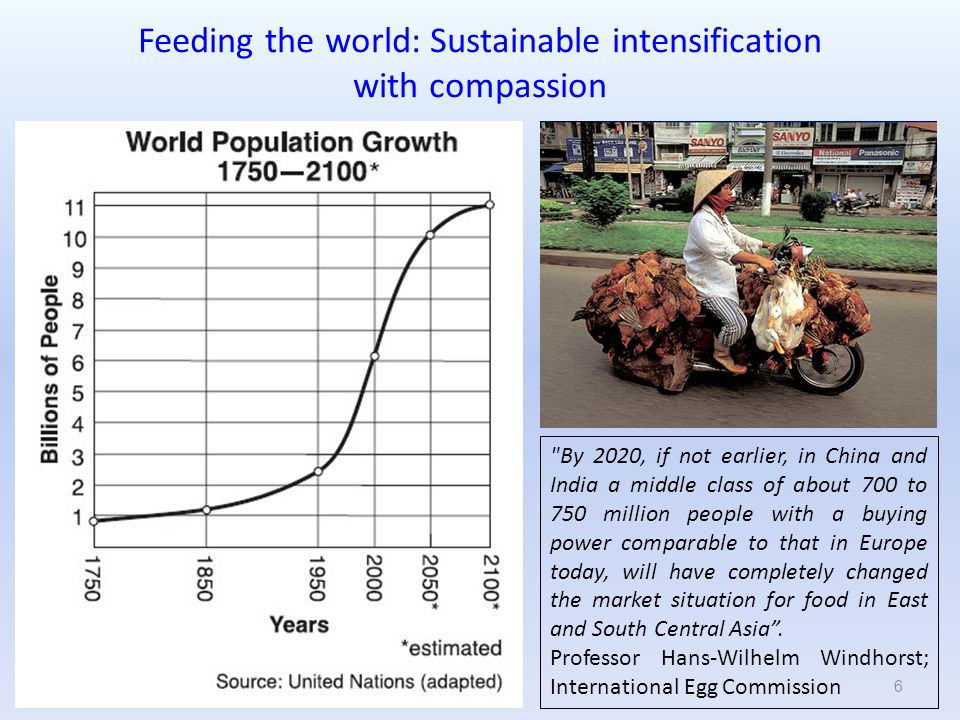 Feeding the world: Sustainable intensification with compassion