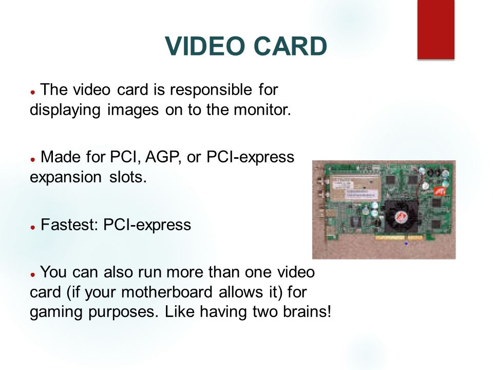VIDEO CARD The video card is responsible for displaying images on to the monitor. Made for PCI, AGP, or PCI-express expansion slots.