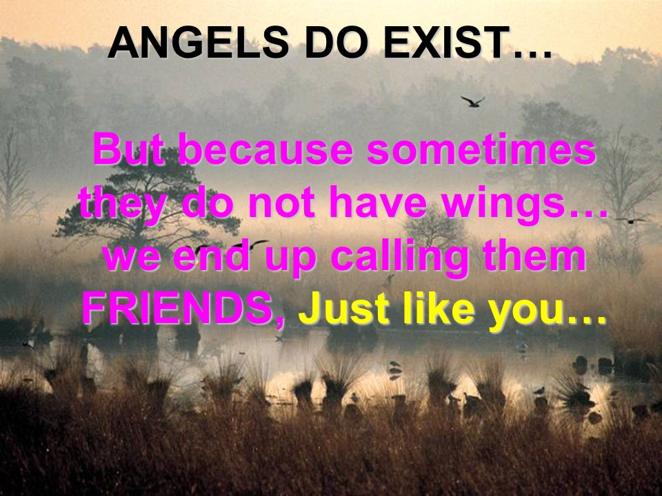 ANGELS DO EXIST… But because sometimes they do not have wings… we end up calling them FRIENDS, Just like you…