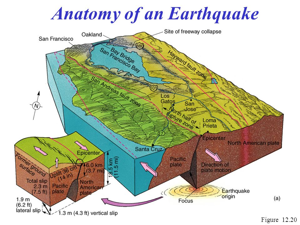 Chapter 12 Tectonics Earthquakes And Volcanism Ppt Video Online