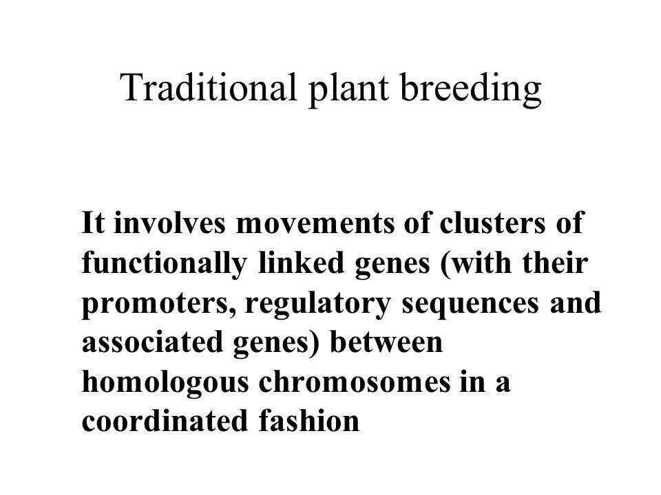 Traditional plant breeding