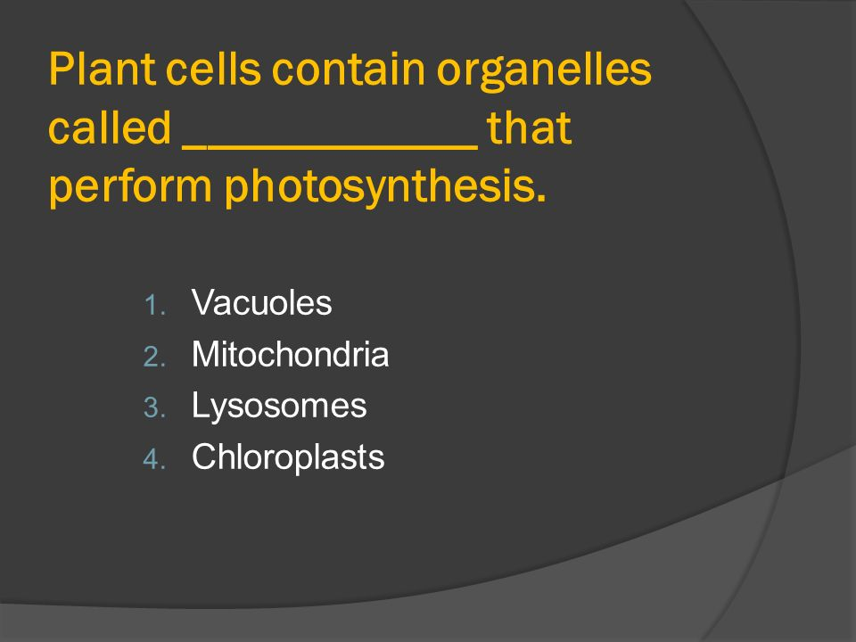 Photosynthesis master ppt video online download 4 plant cells contain organelles called that perform photosynthesis ccuart Gallery