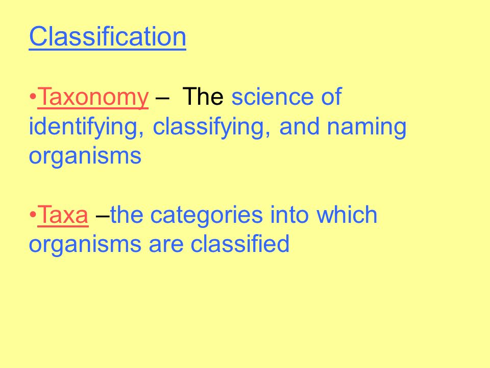 Classification Taxonomy – The science of identifying, classifying, and naming organisms.