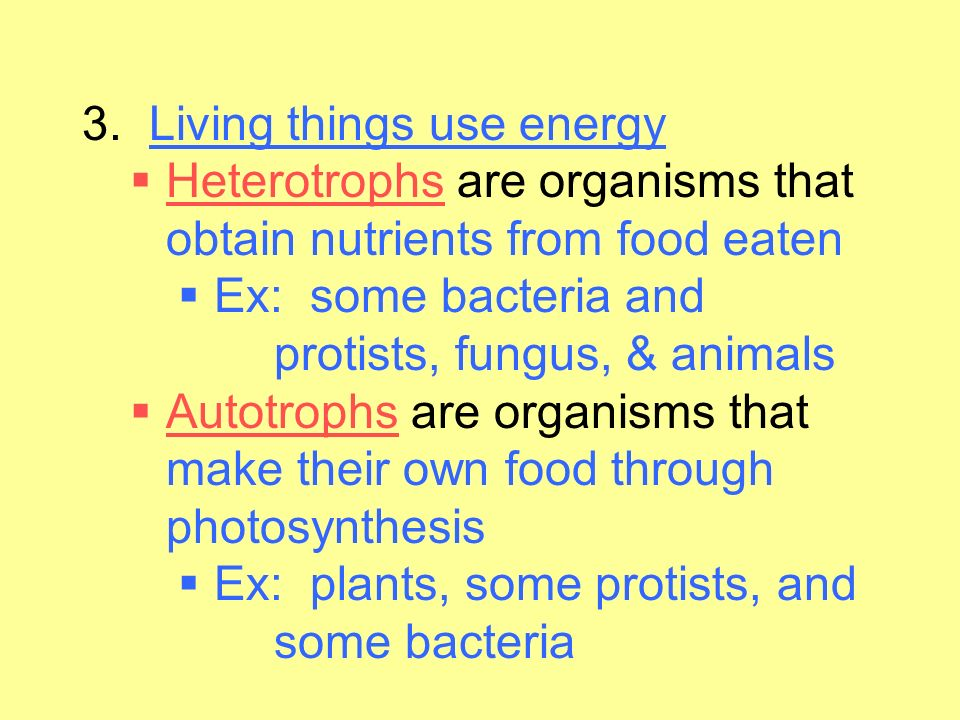 3. Living things use energy Heterotrophs are organisms that obtain nutrients from food eaten. Ex: some bacteria and protists, fungus, & animals.