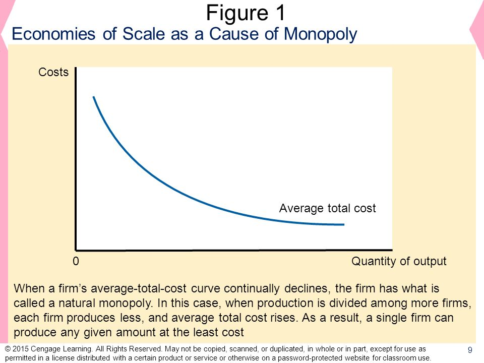 Figure 1 Economies of Scale as a Cause of Monopoly Costs