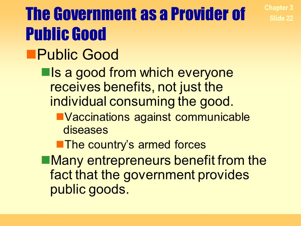 The Government as a Provider of Public Good