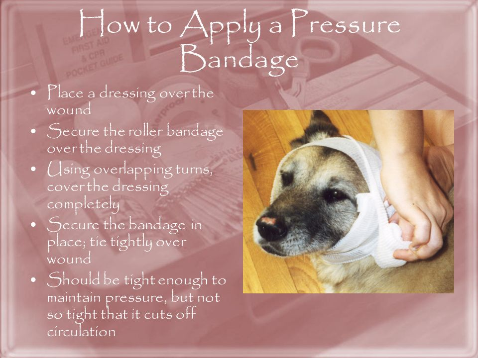 How to Apply a Pressure Bandage
