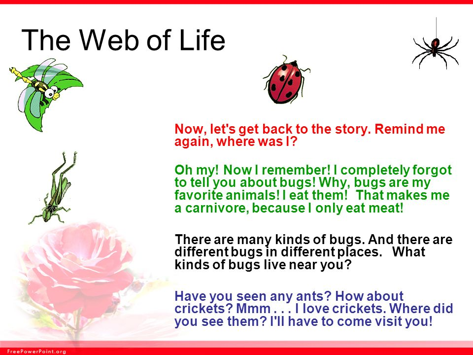 The Web of Life Now, let s get back to the story. Remind me again, where was I