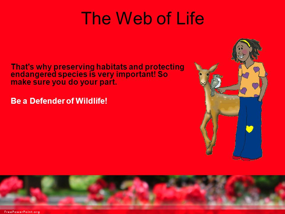 The Web of Life That s why preserving habitats and protecting endangered species is very important! So make sure you do your part.