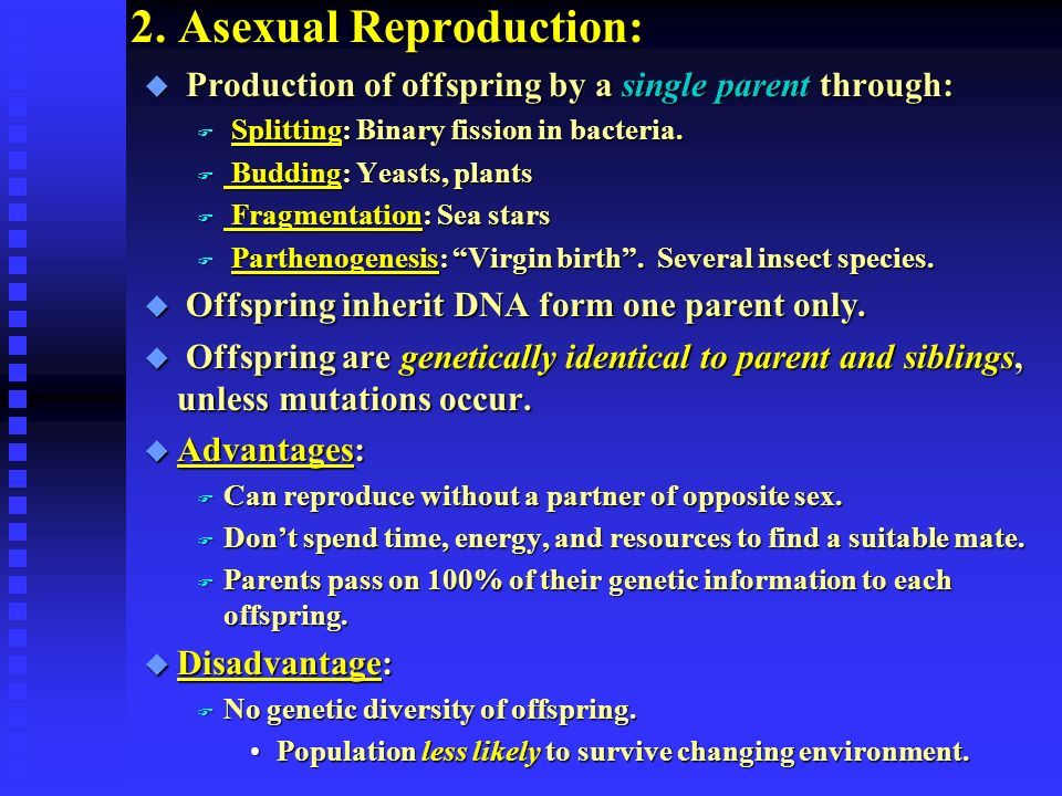 Asexual reproduction parthenogenesis examples of resumes