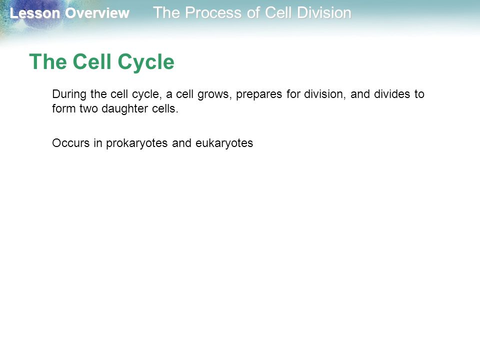 The Cell Cycle During the cell cycle, a cell grows, prepares for division, and divides to form two daughter cells.