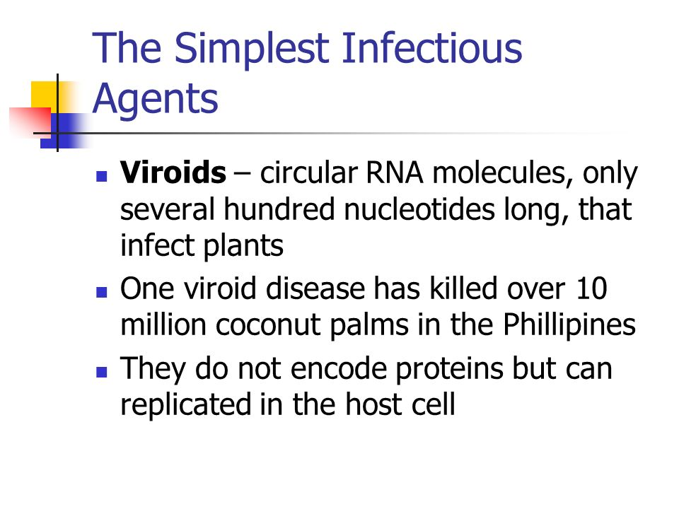 The Simplest Infectious Agents