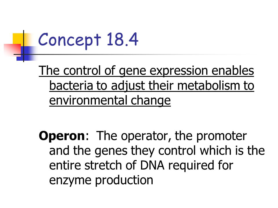 Concept 18.4 The control of gene expression enables bacteria to adjust their metabolism to environmental change.