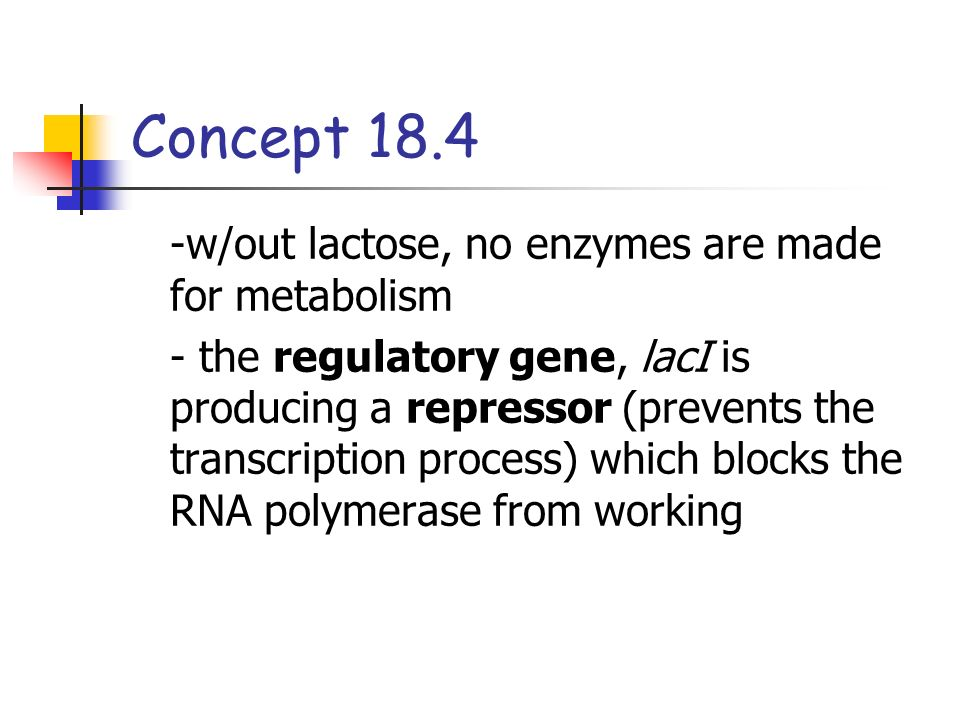 Concept w/out lactose, no enzymes are made for metabolism