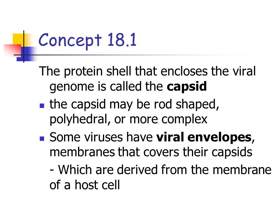Concept 18.1 The protein shell that encloses the viral genome is called the capsid. the capsid may be rod shaped, polyhedral, or more complex.