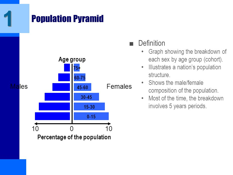 age gender structure of population In article various approaches to restoration of full gender and age structure of the population by data about the main age groups are considered.