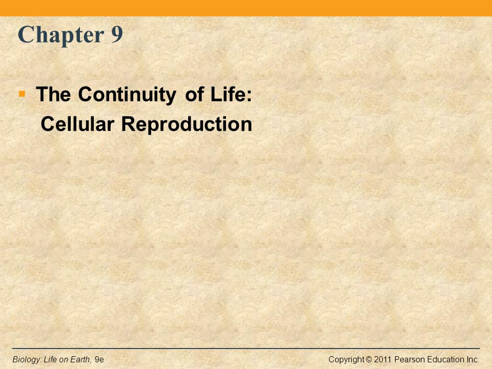 Chapter 9 The Continuity Of Life Cellular Reproduction