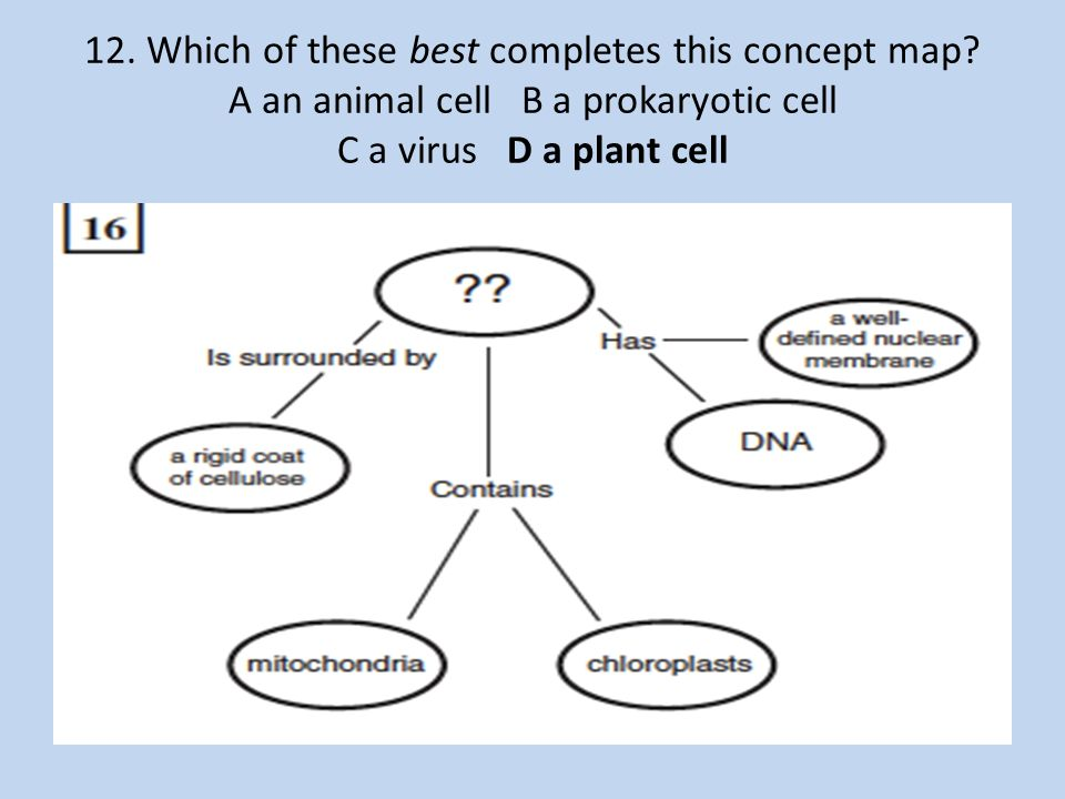 Keystone Biology Practice questions.   ppt download