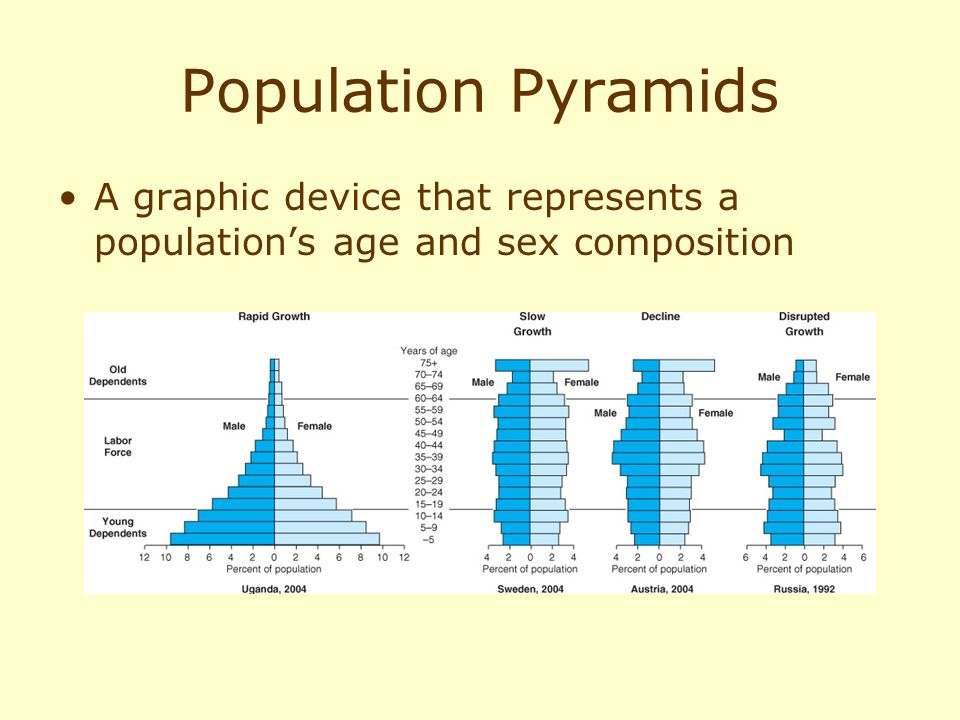 Population Pyramids A graphic device that represents a population's age and sex composition.