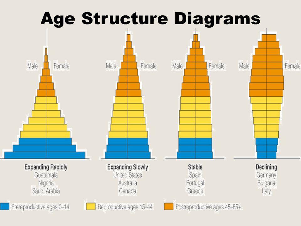 Population Dynamics Ppt Download