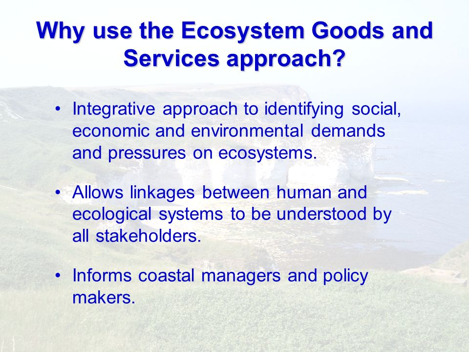 Why use the Ecosystem Goods and Services approach