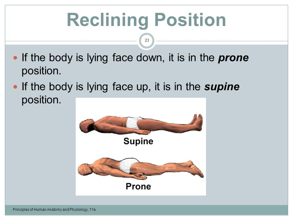 An Introduction To The Human Body Lecture Outline Ppt Video Online