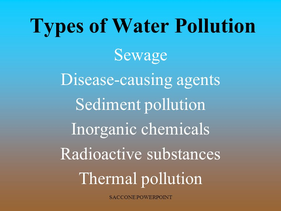 www pollution essay com Pollution prevention is a major global concern because of the harmful effects of pollution on a person's health and on the environment environmental pollution comes in various forms, such as: air pollution, water pollution, soil pollution, etc.
