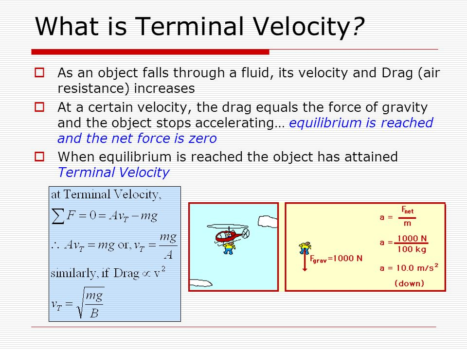 What is Terminal Velocity