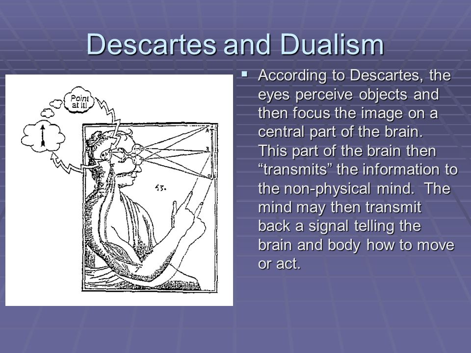 cartesian dualism pdf