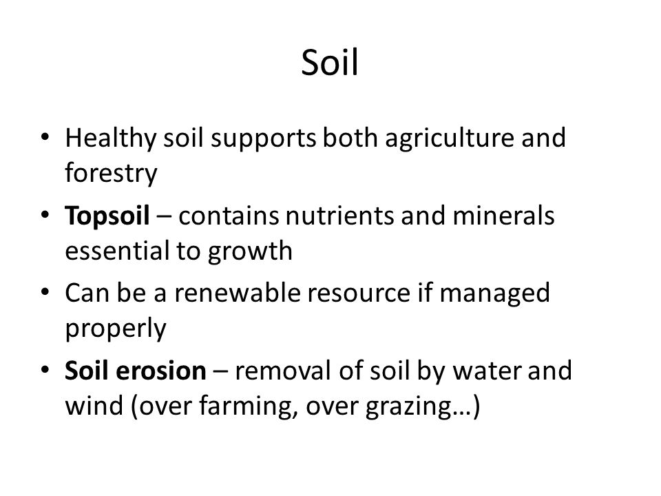 Soil Healthy soil supports both agriculture and forestry