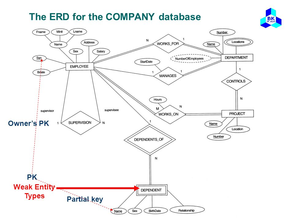 The ERD for the COMPANY database