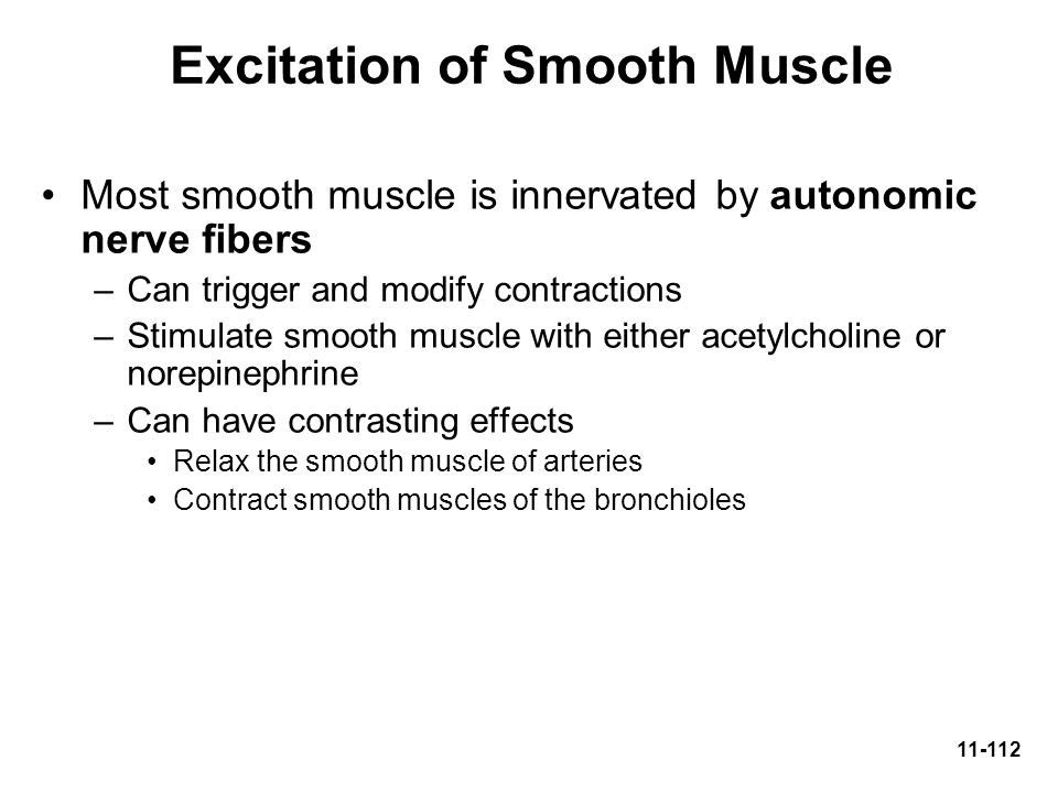 Excitation of Smooth Muscle