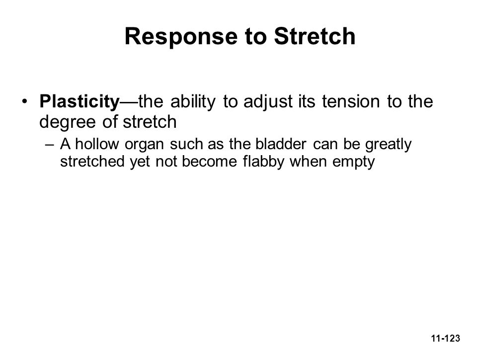 Response to Stretch Plasticity—the ability to adjust its tension to the degree of stretch.