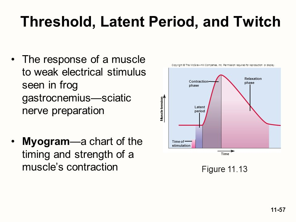 Threshold, Latent Period, and Twitch