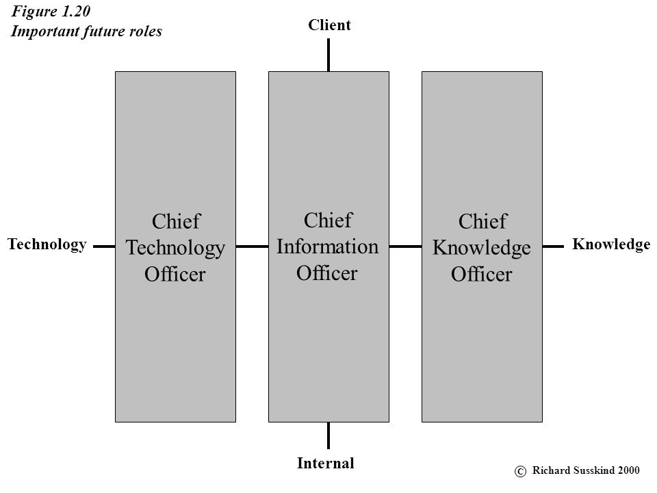 Chief Technology Officer Chief Knowledge Officer Chief Information