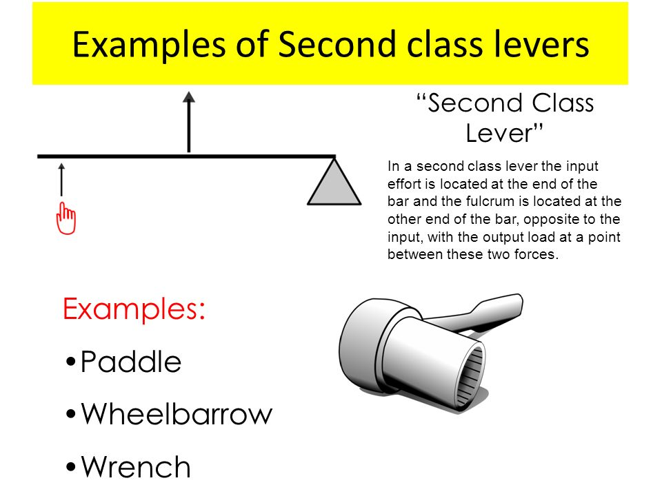 Energy Work And Simple Machines Ppt Download