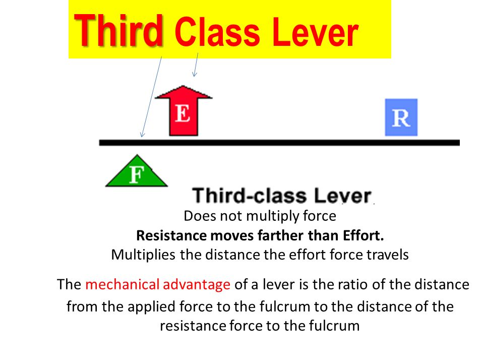 1st Class Lever Diagram With Force Resistant Electrical Work