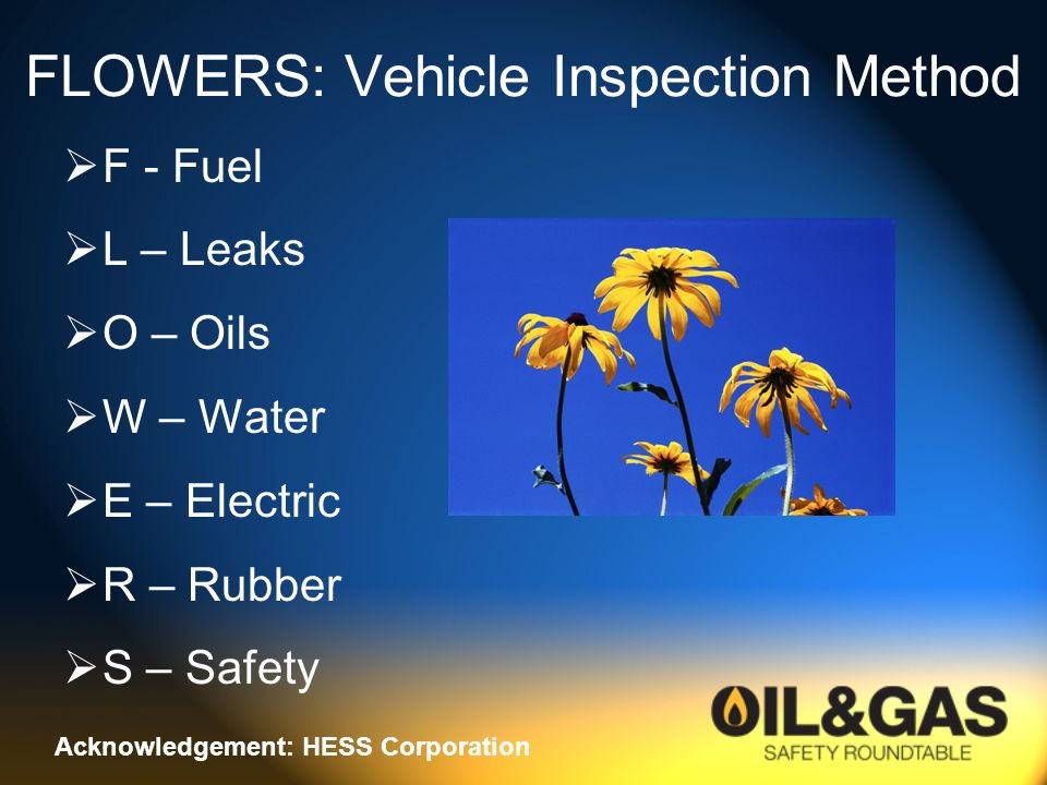 FLOWERS: Vehicle Inspection Method