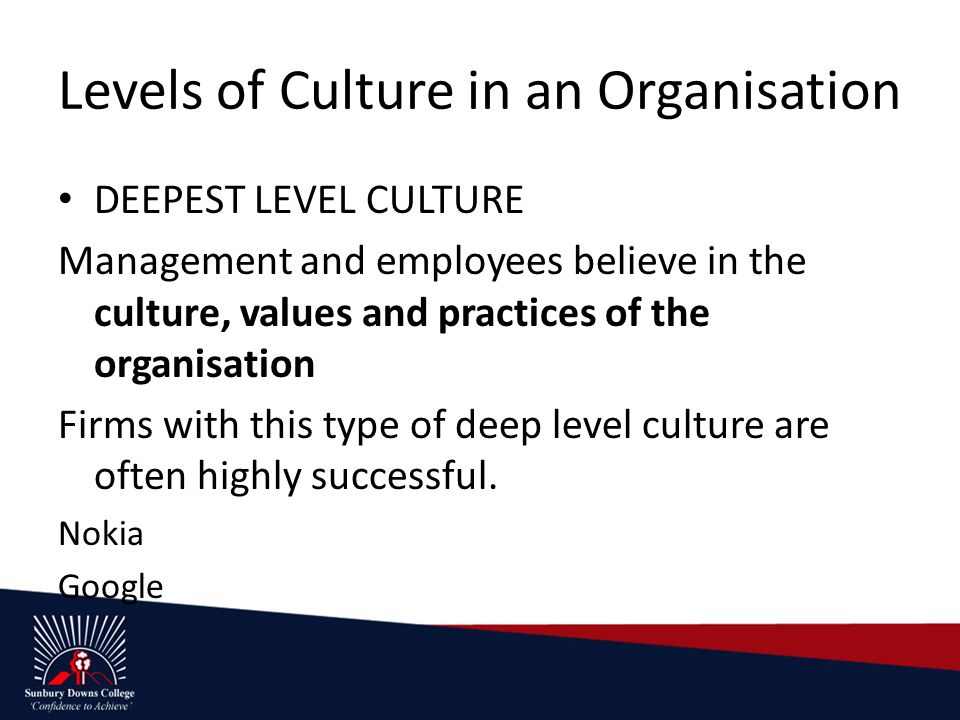 Internal environment of large-scale organisations - ppt download