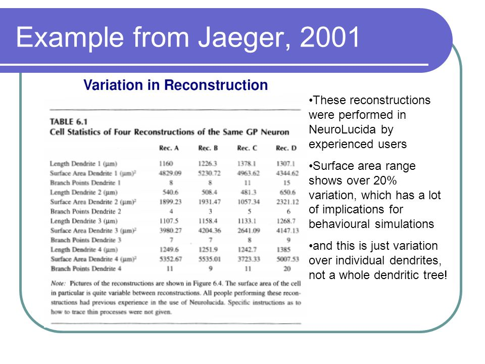 Example from Jaeger, 2001 These reconstructions were performed in NeuroLucida by experienced users.