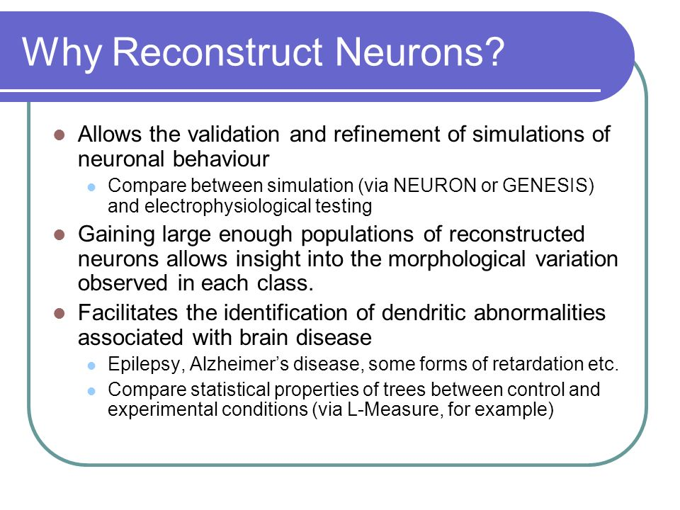 Why Reconstruct Neurons