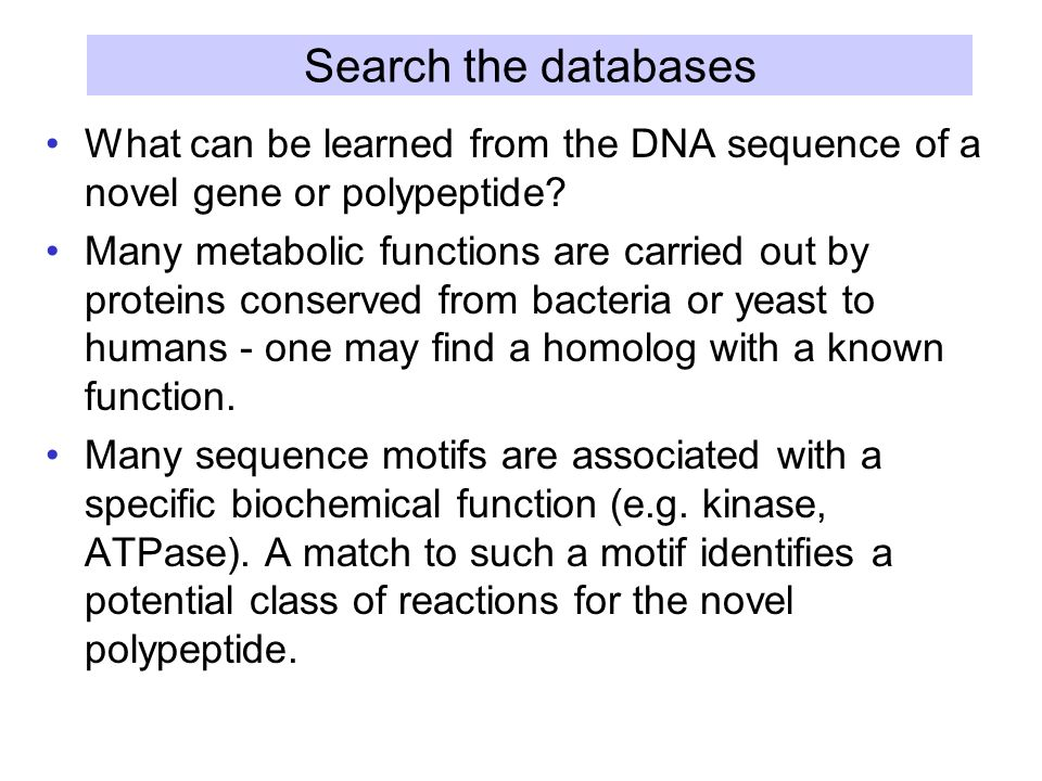 Search the databases What can be learned from the DNA sequence of a novel gene or polypeptide