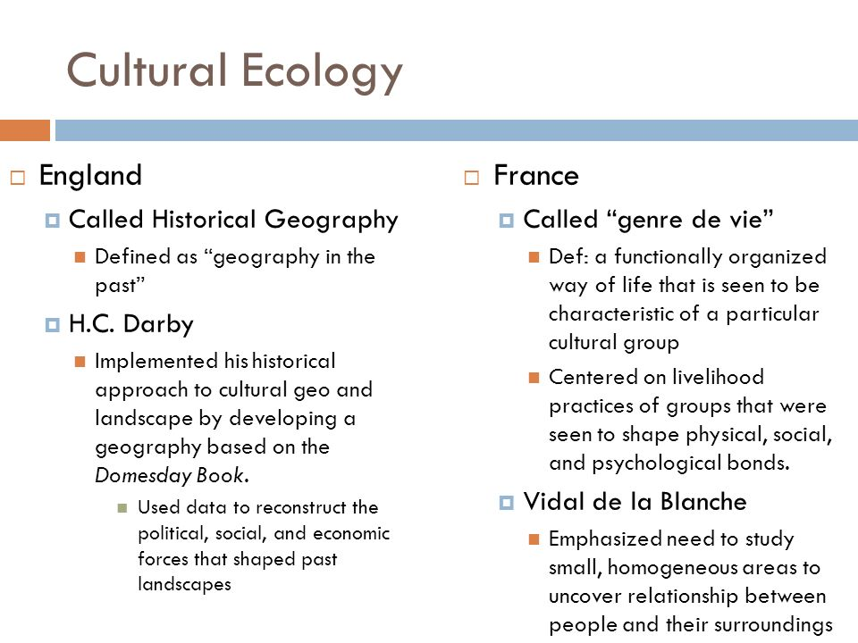 western culture and policies that have shaped Read this essay on non western culture come browse our large digital warehouse of free sample essays in this paper we will look at two separate examples of native non-western cultures that have been impacted by have shaped their political and economic power structure  at the same.
