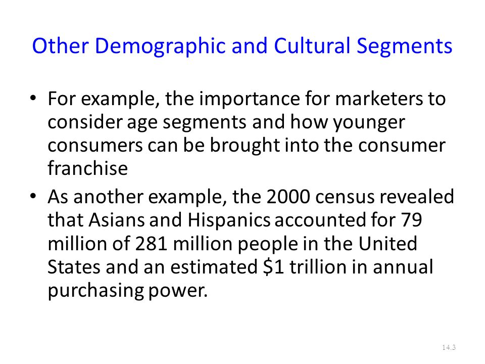 Other Demographic and Cultural Segments