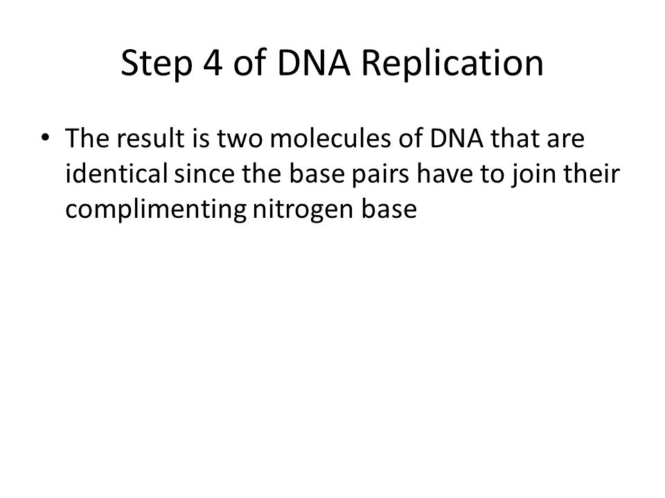 Step 4 of DNA Replication